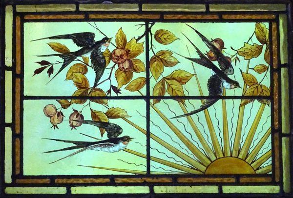 Bird Strike Window